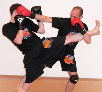 Kampftraining - Akademie für Kampfkunst - Tai Chi, Qi Gong und Kung Fu Schule